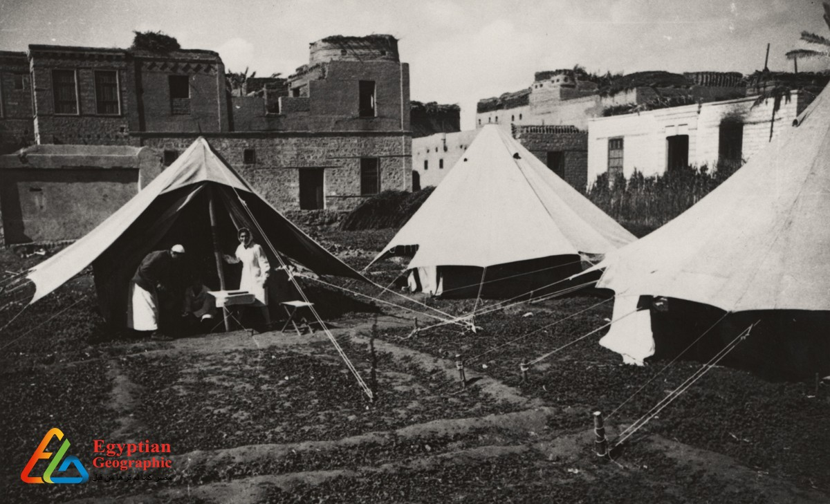From malaria to corona: a history of epidemics in Egypt