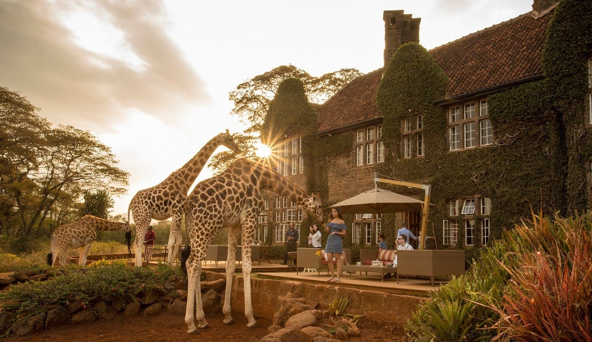 Historic Out of Africa furniture